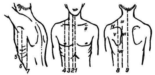 Анатомия человека - vk.com