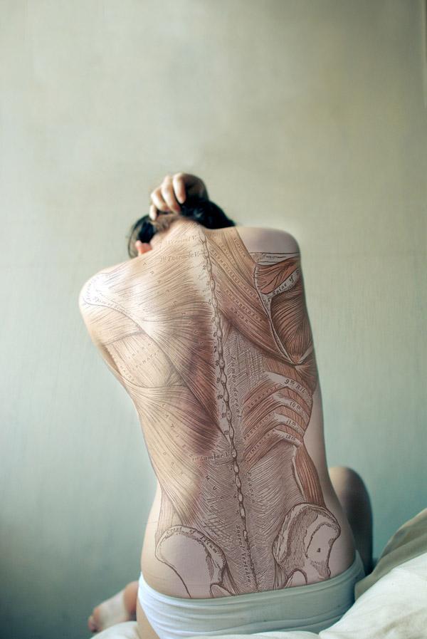 Anatomie d'un dos féminin - paperblog.fr