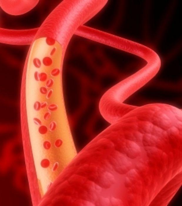 Manger en fonction de son groupe sanguin ? - maxisciences.com