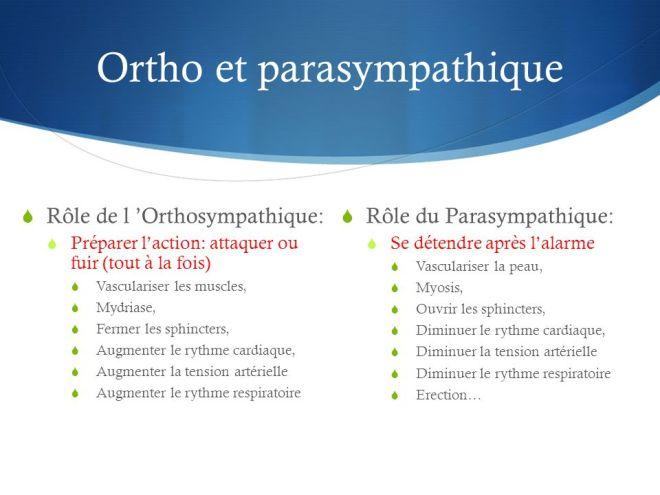 Conséquences du décrochage professionnel - Professeur Philippe Corten - Sibylle Ribeiro - SlidePlayer