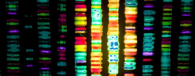 La santé dans les gènes - Le Temps