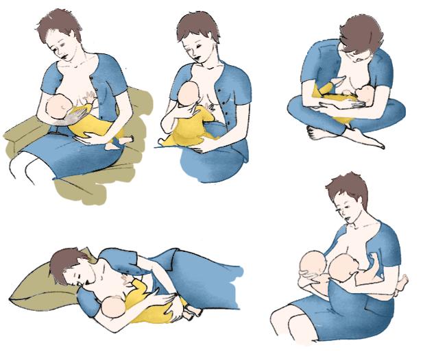Les positions de l'allaitement - Dr Marie Thirion - Flore Jeanson Ostéopathe DO - overblog